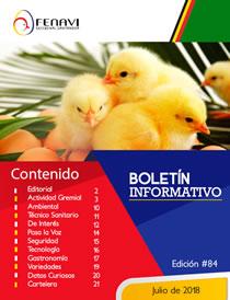 Boletin_Informativo_84