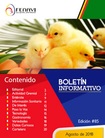 Boletin_Informativo_85